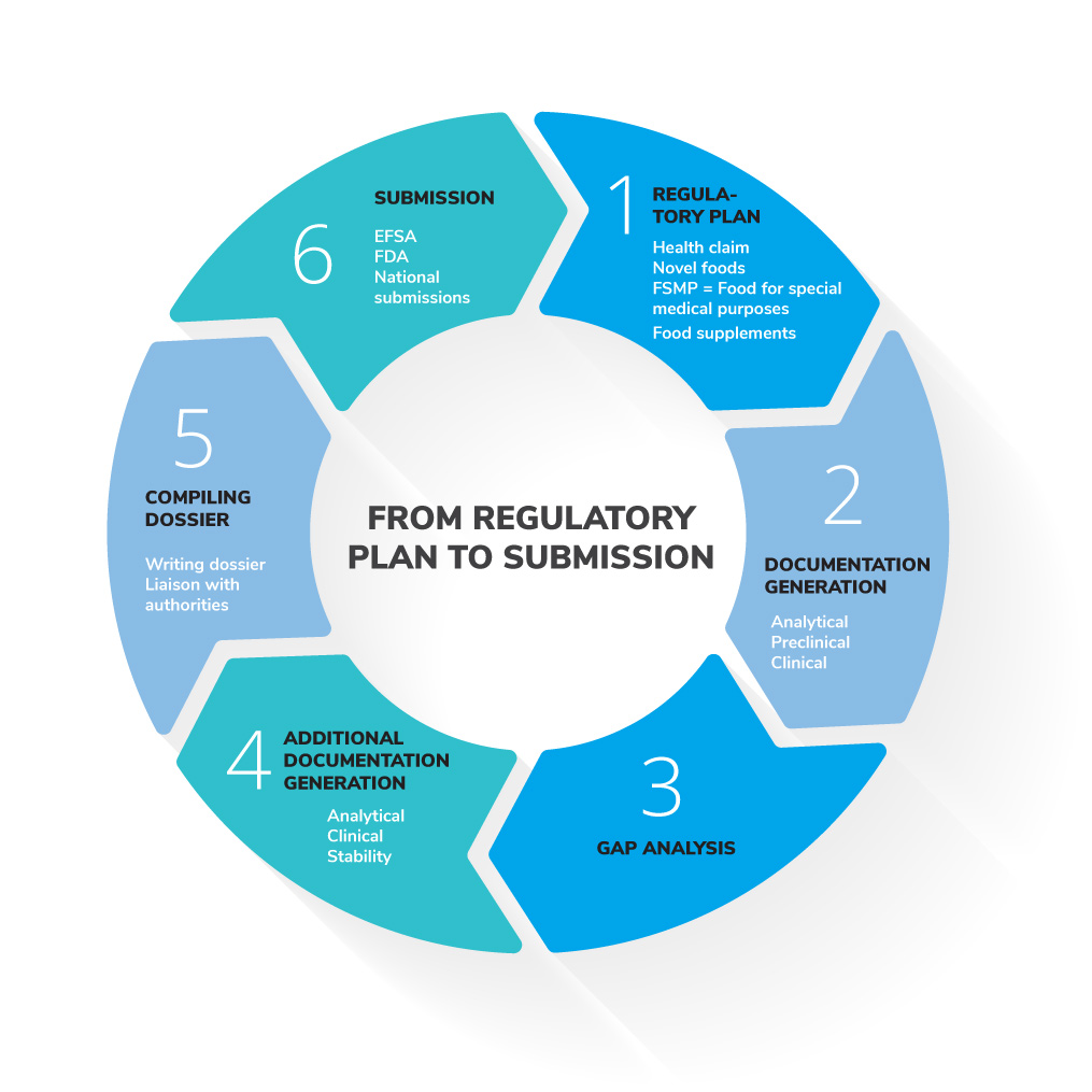 medfiles from regulatory plan to submission